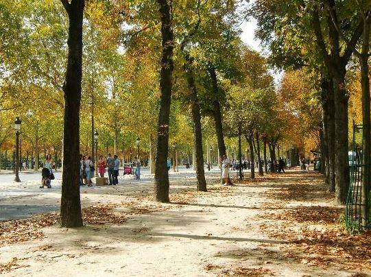 Champs-Elysees (3).JPG