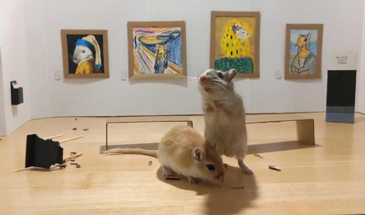 زوجی در قرنطینه یک موزه هنر کوچک برای حیوان خانگی خود ساختند!