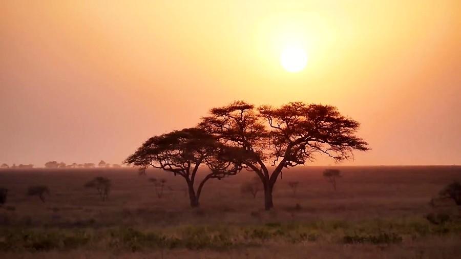 تانزانیا، کشوری شگفت انگیز که روح آفریقا در آن دمیده شده