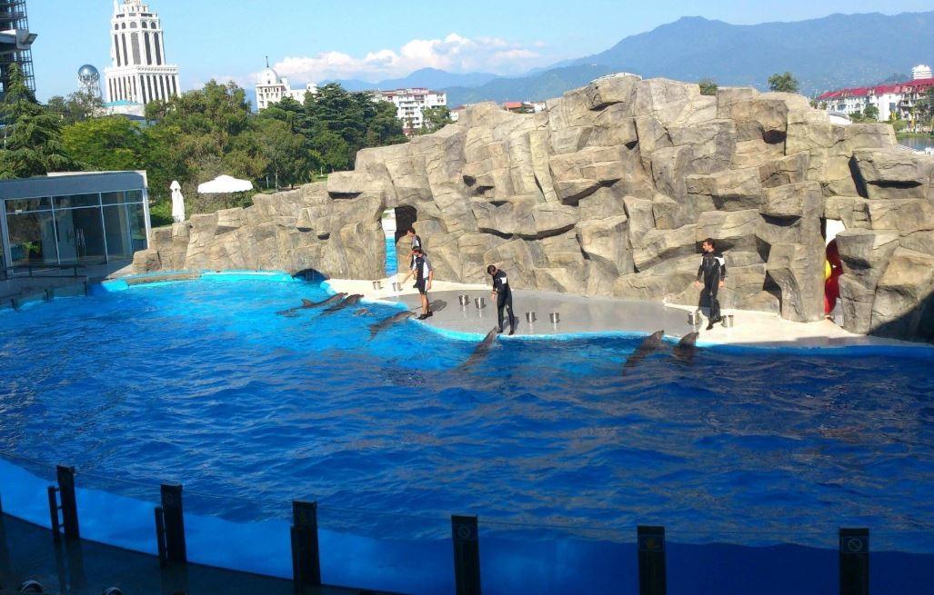 Batumi Dolphinarium (2).JPG