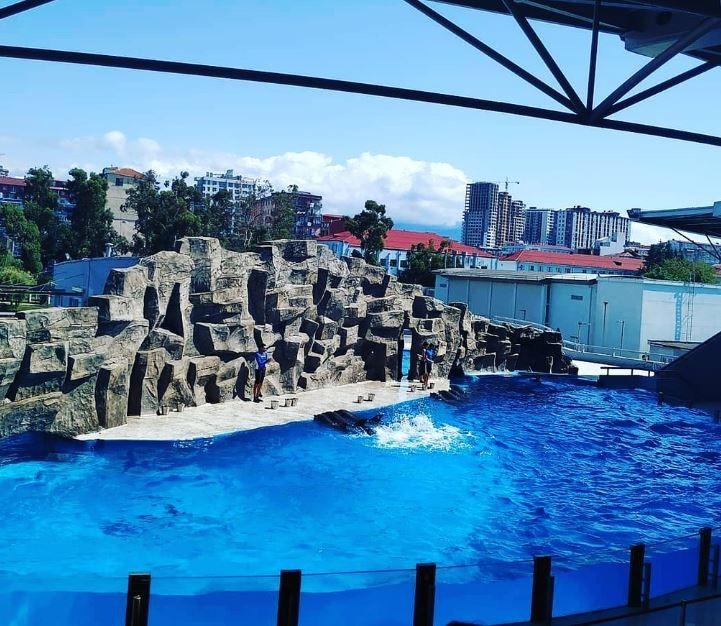 Batumi Dolphinarium (1).JPG