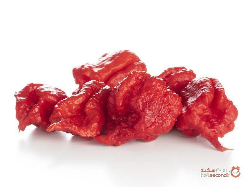 خطرناکترین غذاهای دنیا