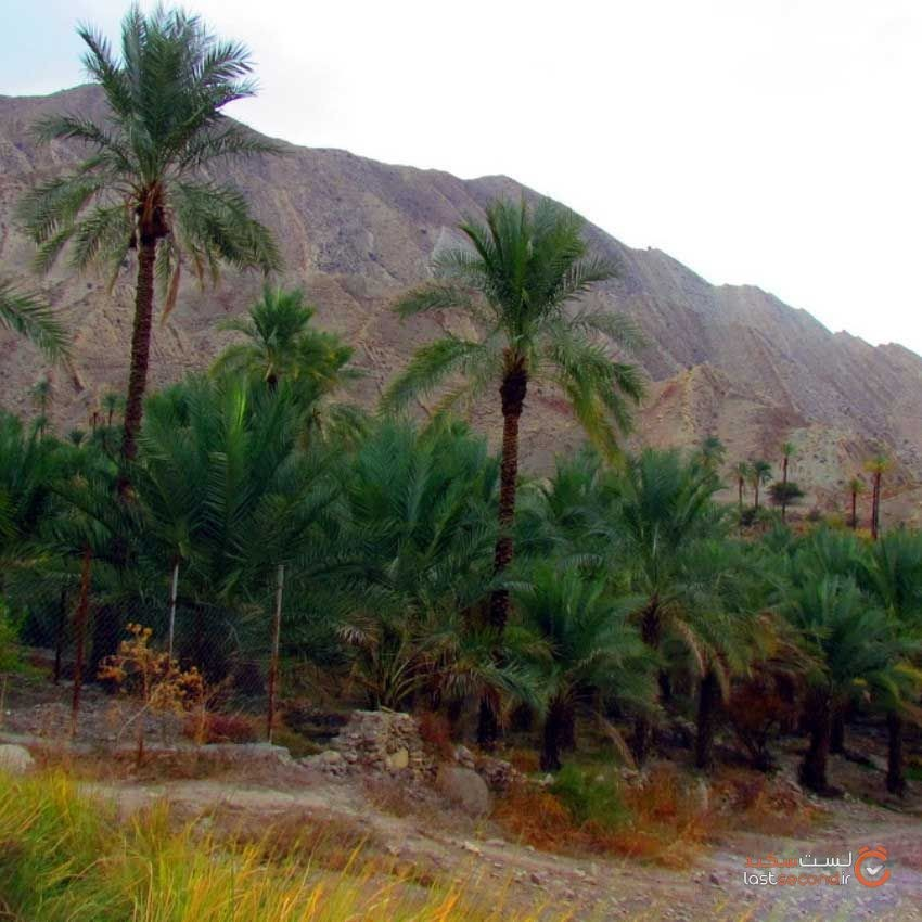 khaeez-tourist-area10.jpg