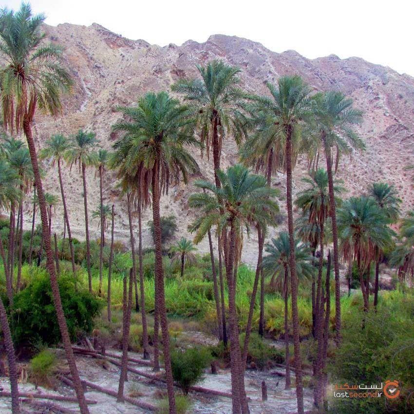 khaeez-tourist-area8.jpg