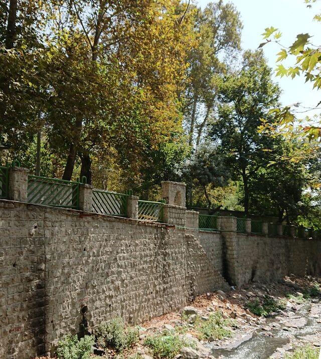 (Arezoo park (kashef (5).jpeg