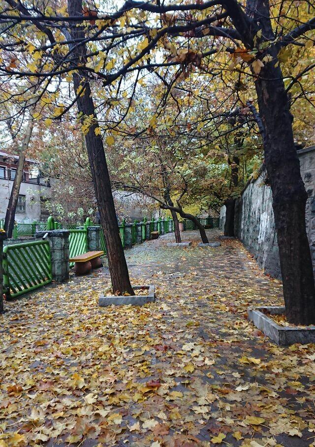 (Arezoo park (kashef (4).jpeg