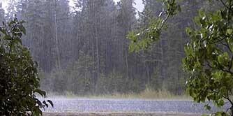 چترها را باید بست, زیر باران باید رفت