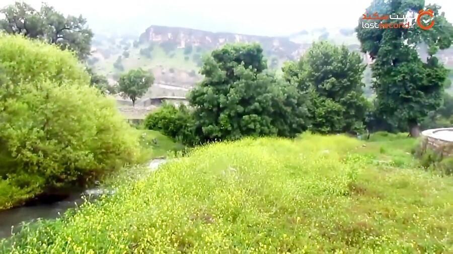 منطقه گردشگری سوسن سرخاب در شمال خوزستان