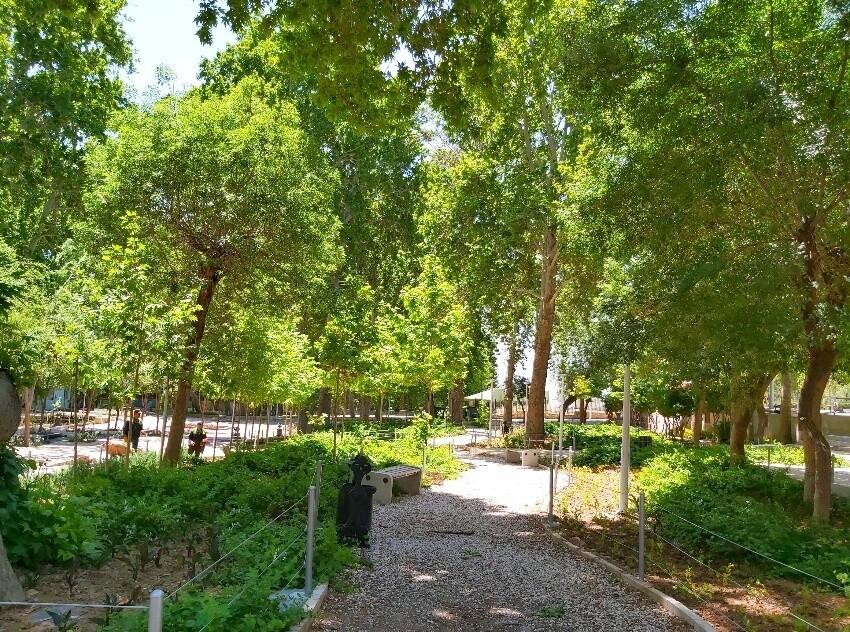Sarcheshmeh Park (5).jpeg