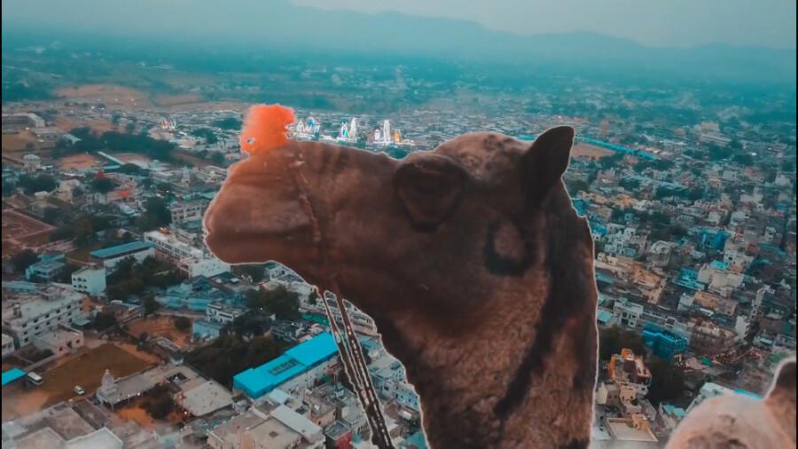 سفری 2 دقیقه به پوشکار هند