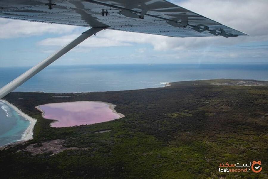آیا شنا کردن در دریاچه هیلر بی خطر است؟ علت رنگ صورتی این دریاچه چیست