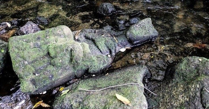 یک ماهیگیر تندیس قرون وسطایی مریم مقدس و فرزندش را کشف کرد!
