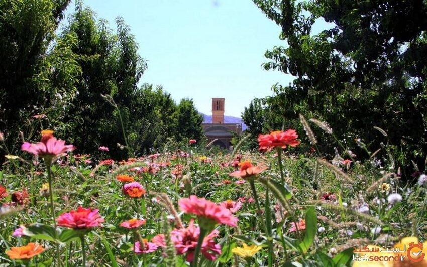 باغ صدری، جاذیه زیبای تفت