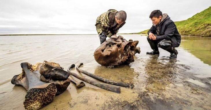 ماموتی با بافتی نرم و دست نخورده، در دریاچه سیبری پیدا شد!