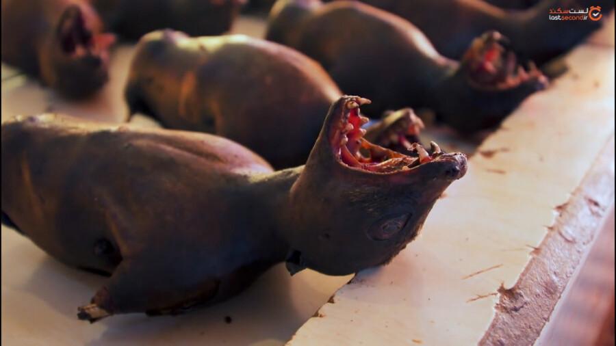 ترسناک ترین بازار گوشت جهان در سولاوسی اندونزی!