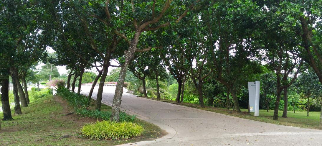 Cyberjaya Lake Gardens (3).jpg