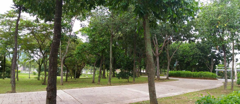 Cyberjaya Lake Gardens (5).jpg
