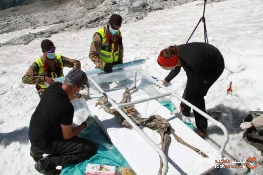 قهرمان اسکیبازی یک بز مومیایی شده و یخزده 400 ساله را در کوههای آلپ پیدا کرد