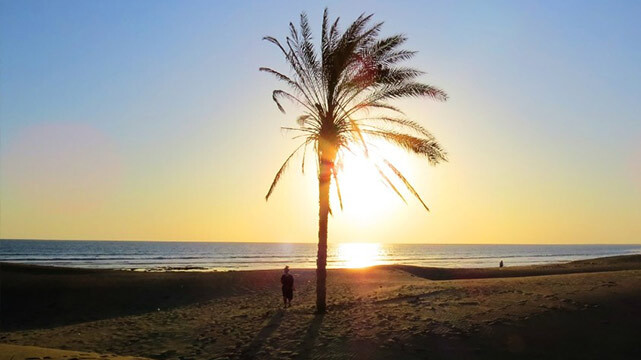 ساحل درک