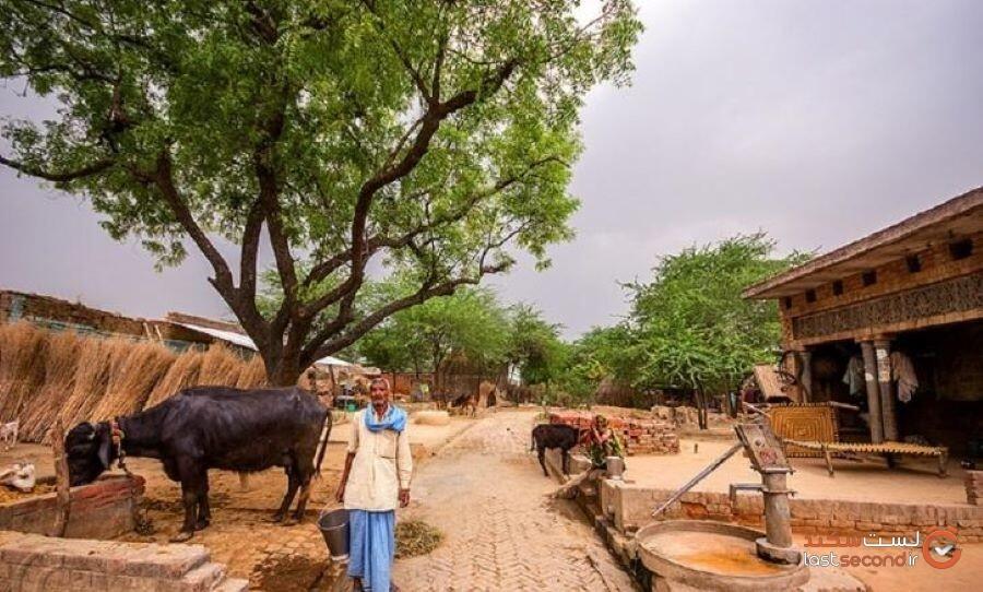 rural-life-style.jpg
