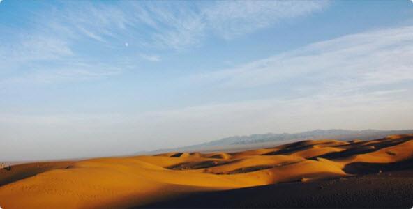 Reejen Desert