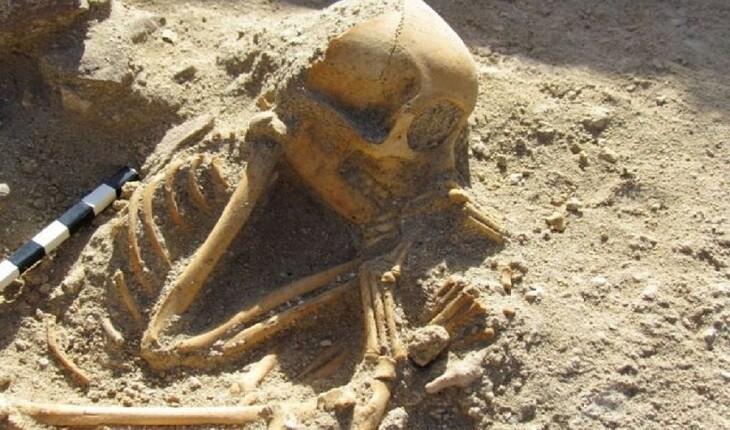 کشف میمون های 2000 ساله که همانند نوزادان خوابیده دفن شده اند!