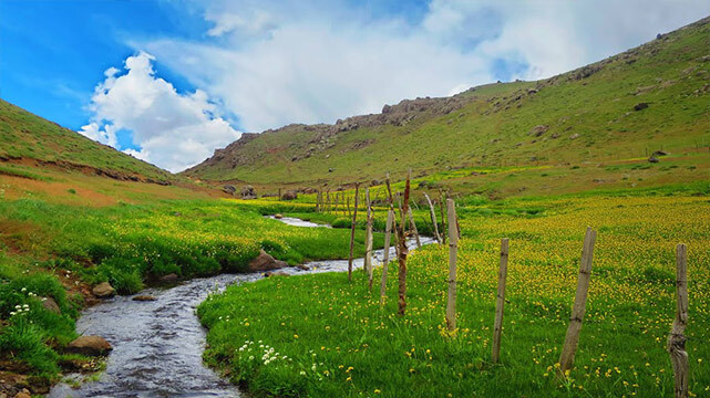 ترکینگ مسیر دریاچه نئور به ییلاق سوباتان و جنگل لیسار ( سیری در طبیعت اردبیل و تالش )