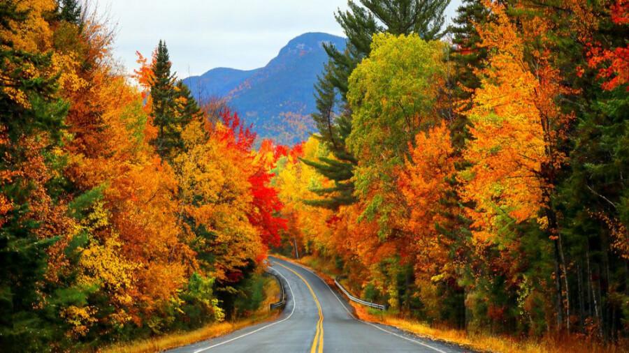 پاییزهای خیره کننده و رنگین در دنیا!