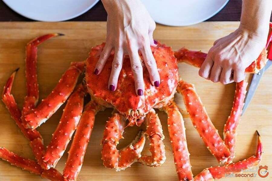Alaskan-Red-King-Crab.jpg