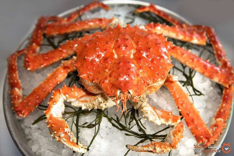 Alaskan-Red-King-Crab-3.jpg