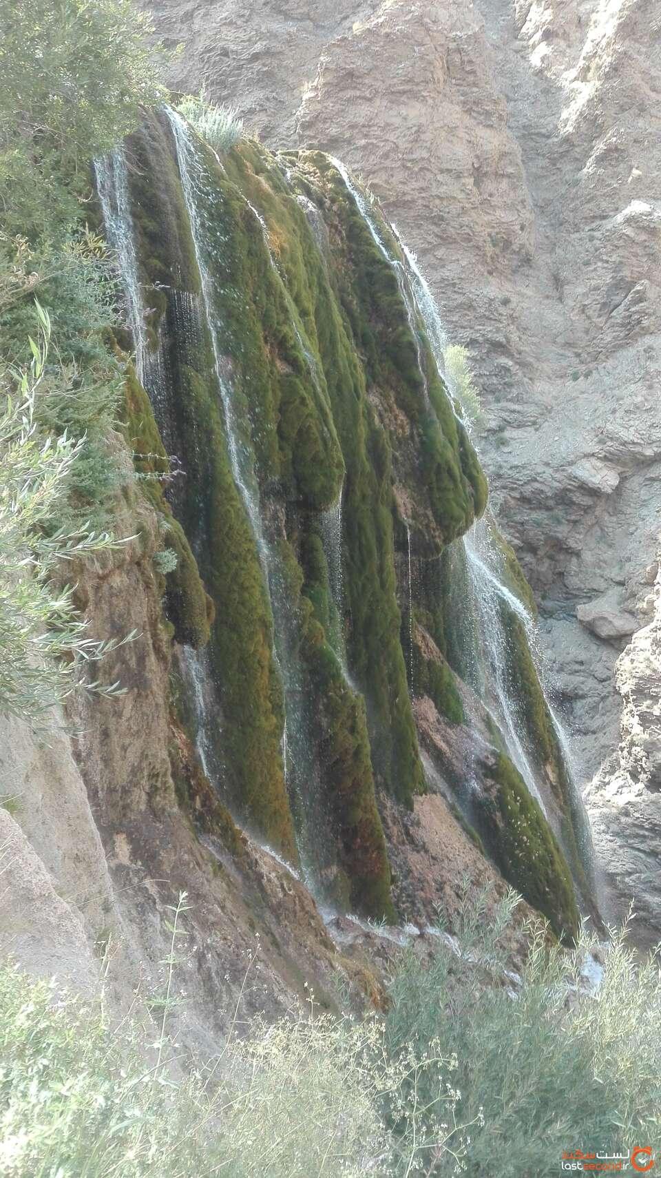 آبشار خزه ای پونه زار