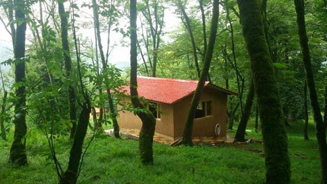 سفر به جنگل جوارم و پلنگ دره