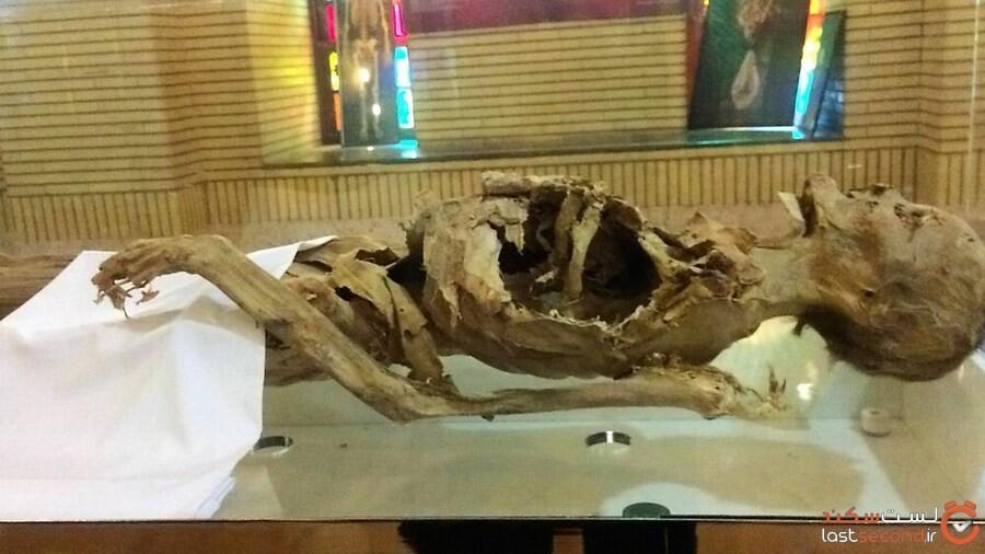 جسد مومیایی مرموز یزد ثبت ملی شد