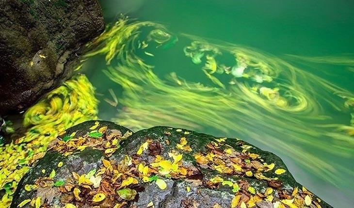 روستای درکش، داروخانه طبیعی ایران