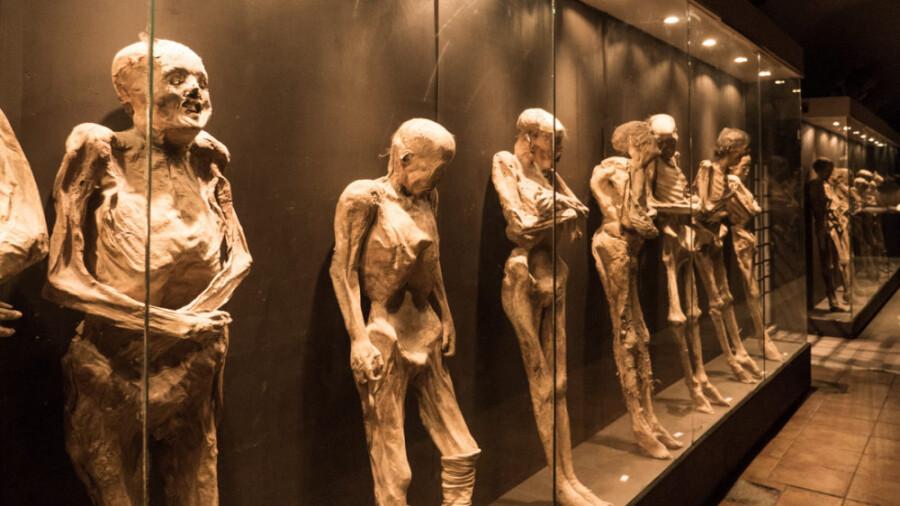 موزه مومیایی، جایی که در مقابل مرگ قرار می گیرید!