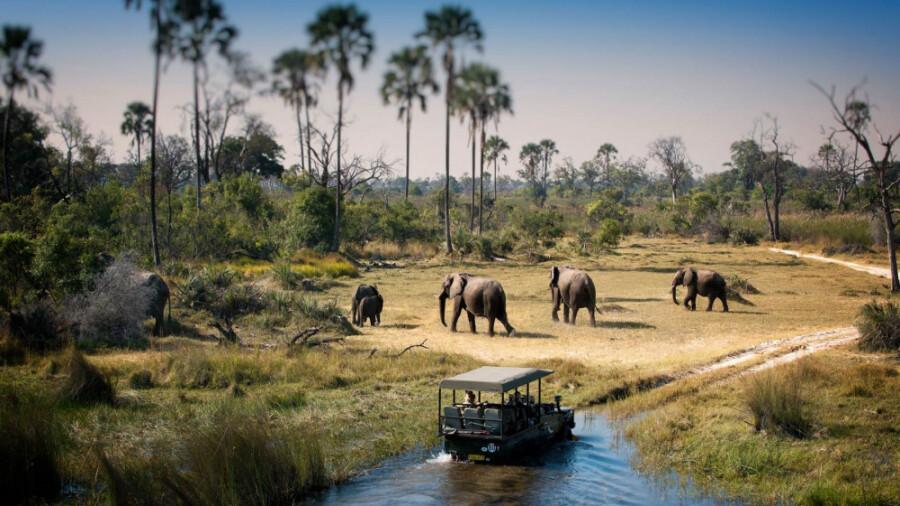 پارک ملی چوبه در آفریقا