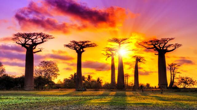 سفرنامه ماداگاسکار