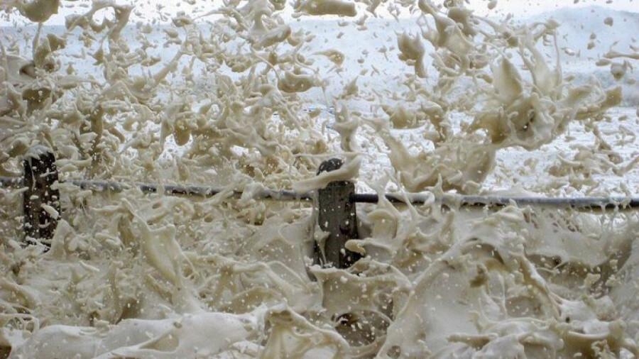 سواحل استرالیا امسال هم شاهد امواج کاپوچینو بود!
