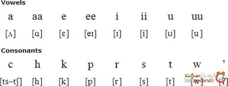 زبان سرخپوست ها