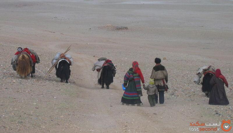 چانگتانگ تبت