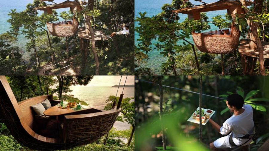 تریپاد داینینگ، رستوران درختی با پذیرایی عجیب در تایلند!