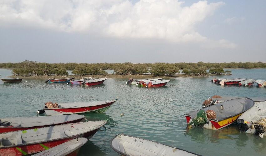 راهنمای سفر به جزیره قشم، بزرگترین جزیره ایران