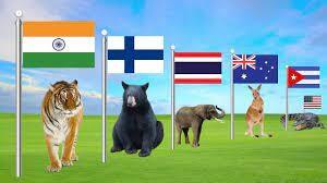 حیوانات ملی که نماد کشورها هستند