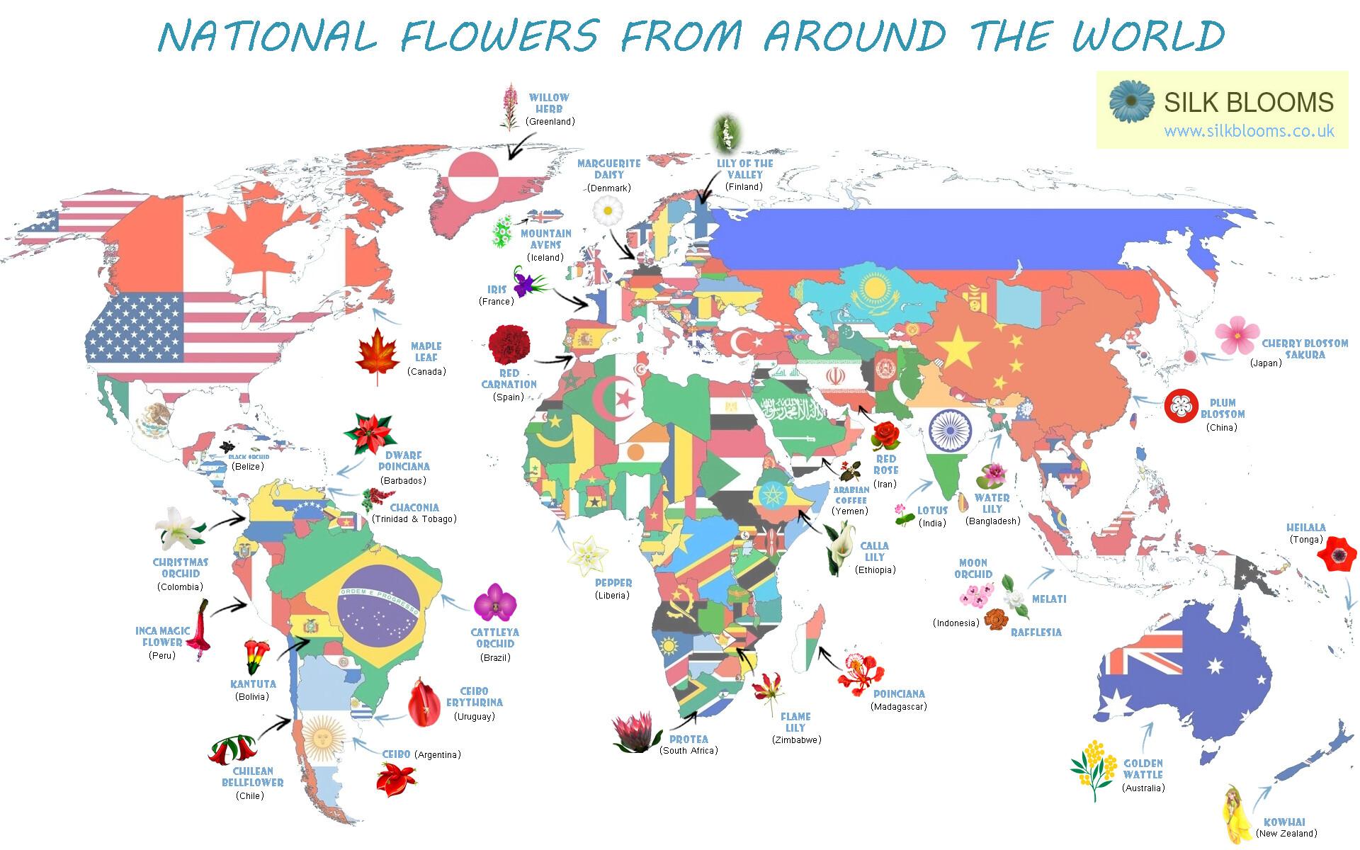 معانی گلها و گل به عنوان نماد کشورها!