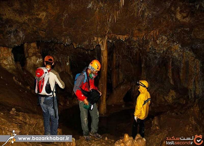 غار گل زرد