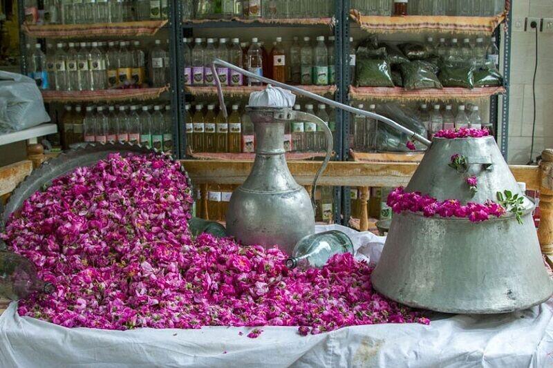 سنت گلابگیری و معروف ترین گلاب ها در شهرهای ایران