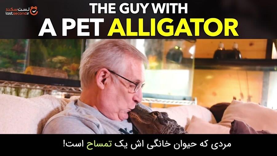 بهترین همدم این مرد یک تمساح خونگی است!
