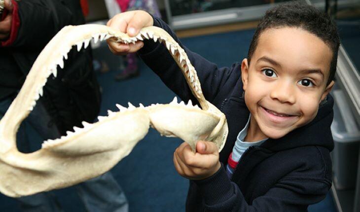 با مفرح ترین موزه های کودکان در سراسر دنیا آشنا شوید