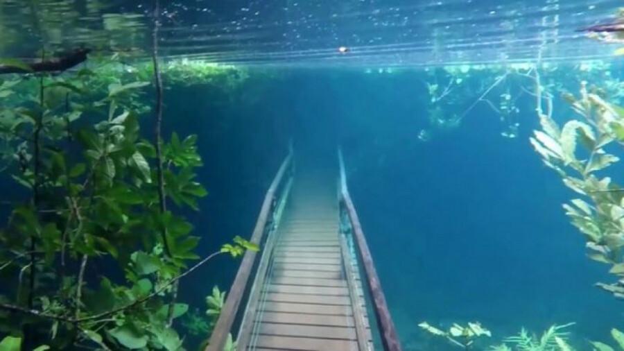 پیاده روی در زیر آب!