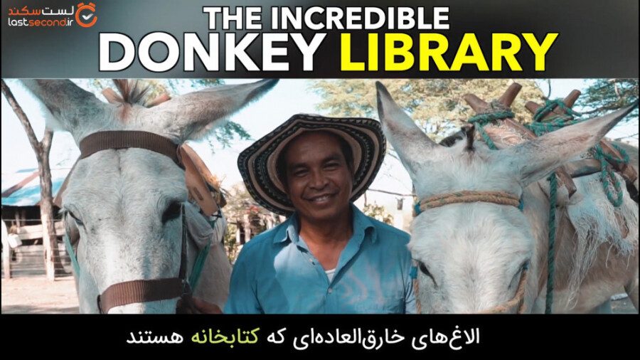 الاغ های این مرد دو کتابخانه سیار هستند!